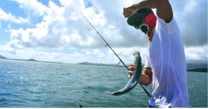 How to choose fishing line fluorocarbon - 5 important factors